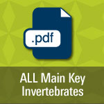 All Main Key Invertebrates pdf.